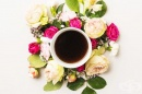 Направете чай от рози за добро храносмилане и имунитет