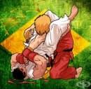 Бразилско жиу-жицу