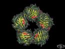 C-реактивен протеин