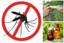 Репеленти за комари