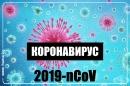 Важните неща за новия Коронавирус - nCoV - видео