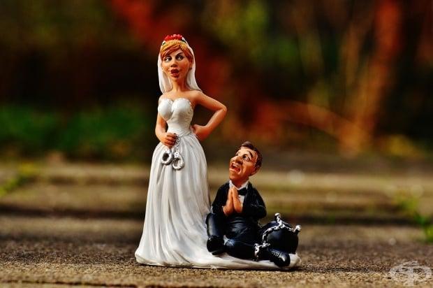 След като жената се сдобие с мъж, тя най-накрая разбира кой е виновен за всичко в този живот