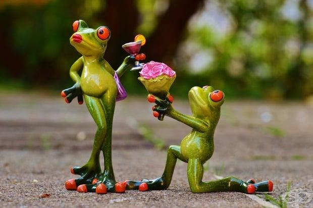 Тайната на добрия брак е когато си сгрешил, да се извиниш, а когато си прав - да си мълчиш