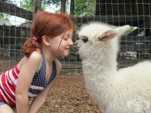 Ескимоска целувка?
