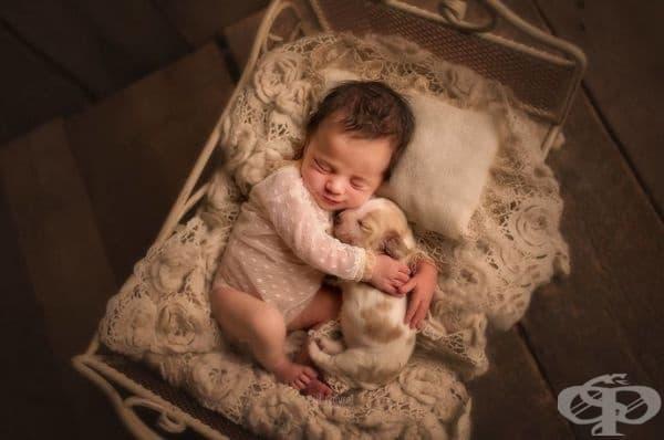 20 прекрасни снимки на бебета с животни