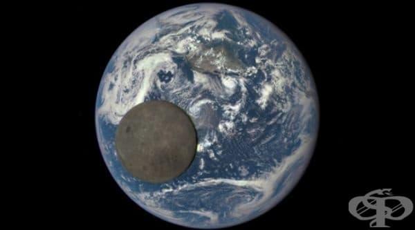 Това не е петно върху снимката. Това е снимка на Луната, където Земята е в позицията си на фон. Снимката от НАСА предлага един изключително рядък изглед на двете небесни тела.