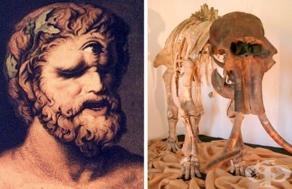 Митът за циклопите. Гръцките митове са изпълнени с истории за циклопите. Но дали те са истина или просто са ги объркали с нещо? Според историци при откриването на останки от мамути, гърците не са разбрали чии са големите кости и са направили свои изводи.