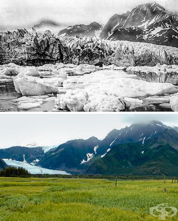 Ледник Педерсен, Аляска преди 100 години и днес.