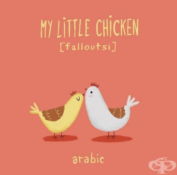 Мое малко пиленце. Арабски.