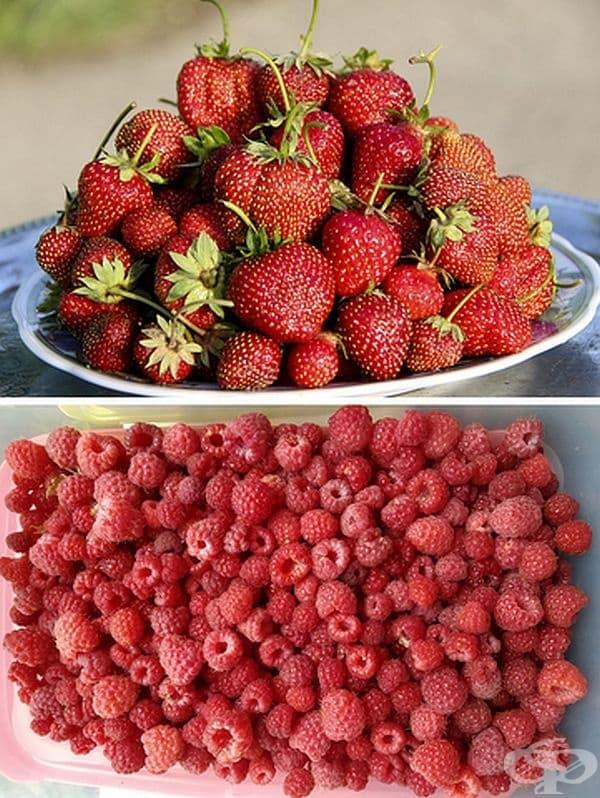 Ягодите са единствените плодове с външни семки, но не се определят като горски плодове. Ботанически плодовете са месест продукт, израснал от едно цвете. Ягодите, малините и къпините не отговарят на този критерий.