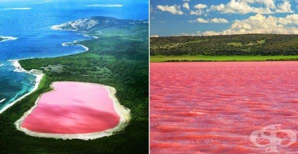 Защо розовите езера в Австралия са розови? - изображение