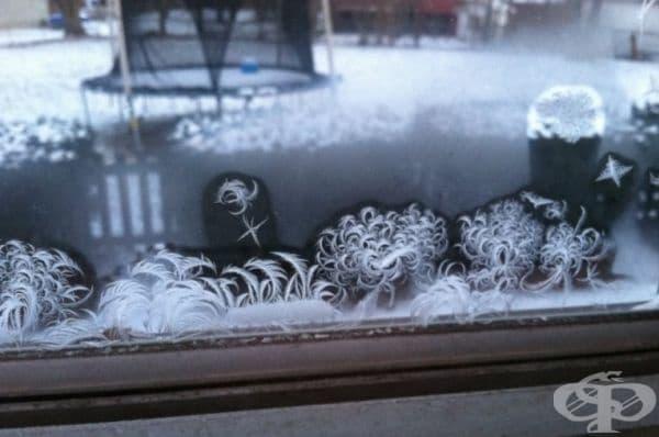 27 доказателства, че зимата е едновременно брилянтен художник, дизайнер и скулптор - изображение