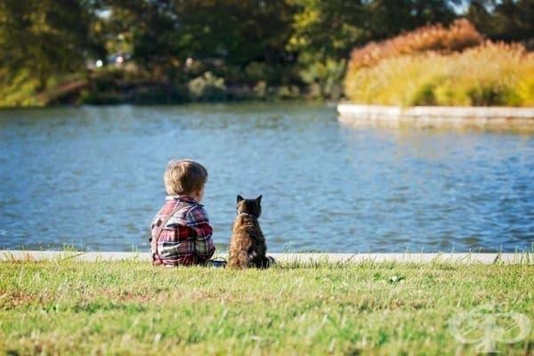 """""""Моят син обича моята котка още от деня, в който се роди. Тя толерира тази любов. И го прави по начин, който никога преди не съм подозирал, че може да съществува."""""""