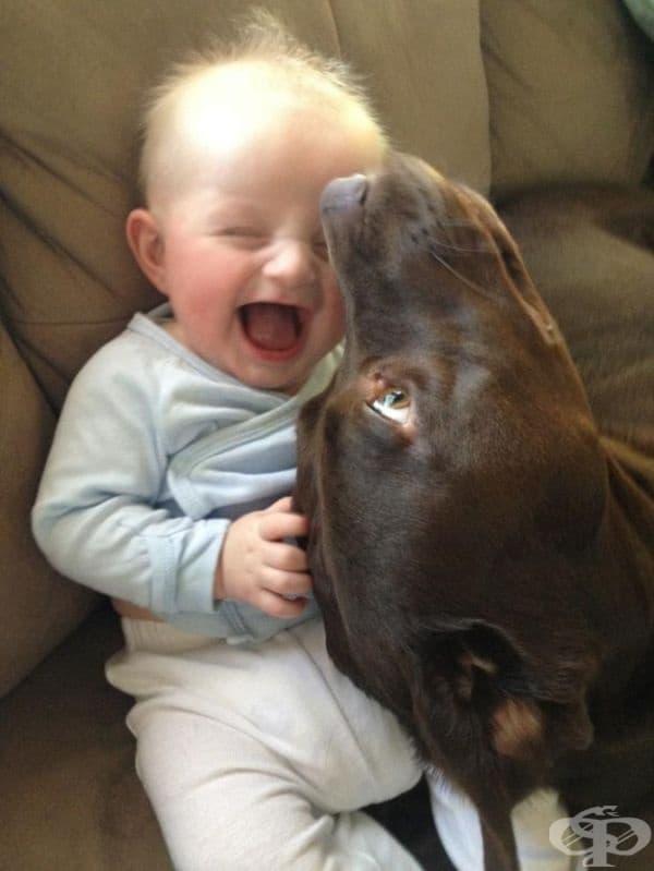 Те вече са най-добри приятели.