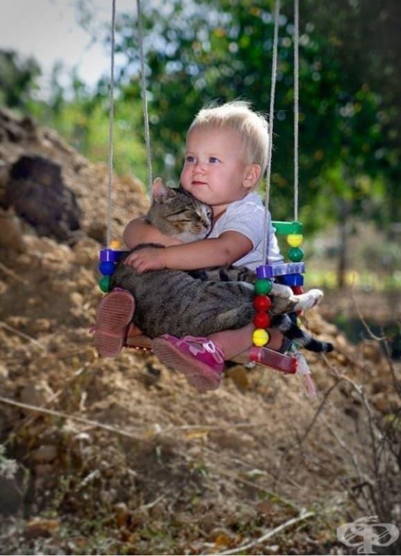 Всеки знае, че котките са едни от най-независимите домашни любимци, но по-голямата част от тях са изключително търпеливи, когато се занимават с деца. Те няма да покажат ноктите си в такъв случай.