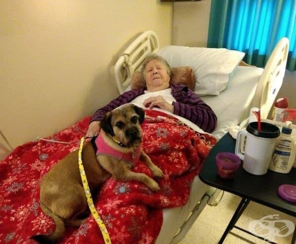 """""""Моята 93-годишна баба се чувства наистина самотна в старческия дом, но винаги очаква с нетърпение кучето ми."""""""
