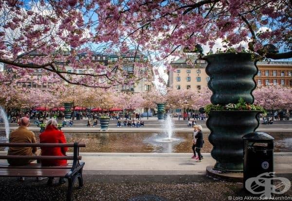 Стокхолм, Швеция.
