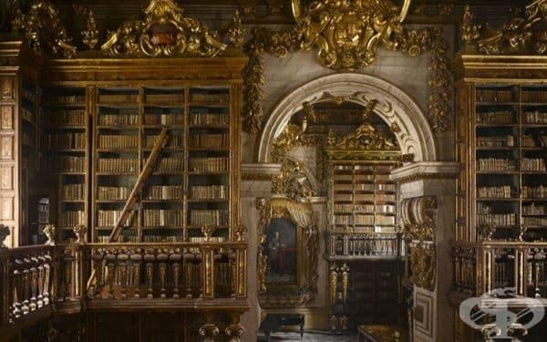 """Библиотека """"Джоарина"""", Колимба, Португалия."""