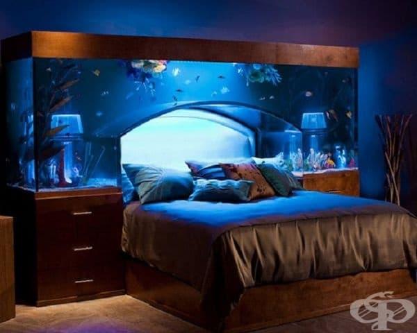 За тези, които обичат да гледат рибки, а не да броят животни преди сън. Аквариум над спалнята – много хора считат това за успокояващо.