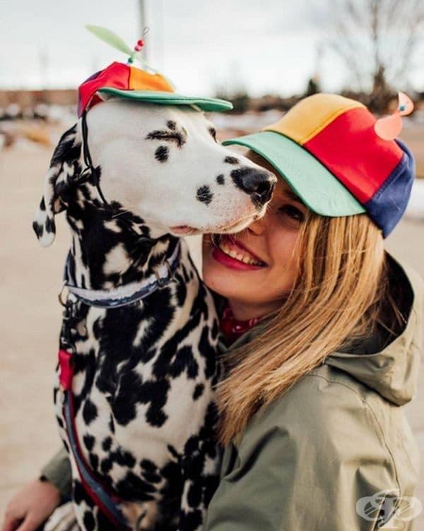 По думите на Лекси, Уайли е 24-килограмово куче, изпълнено с лудост и любов.