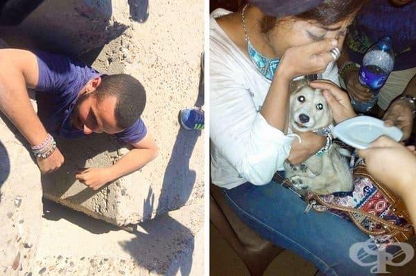 Кучето е било заклещено, а местните хора са го хранили в продължение на месец. Спасителната акция е била много сложна и е продължила 5 дни.