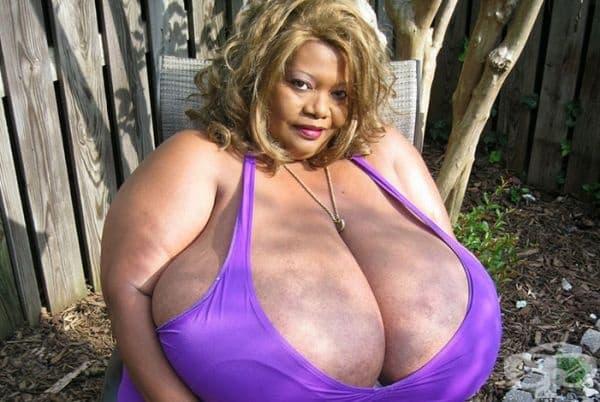 Жената с най-голям естествен бюст. Американката Норма Щиц е жената с най-голям естествен бюст в света-обем 180 см, тегло на всяка гърда 25,5 кг. Рекордът е от 1999 г. и оттогава многократно го потвърждава. Участва във филми за възрастни, майка е на 2 деца