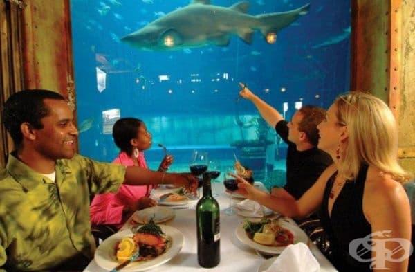 """Ресторант """"Cargo Hold Restaurant"""", Дърбан, Южна Африка. Ресторантът се помещава в корпуса на истински кораб и предлага внушително меню."""