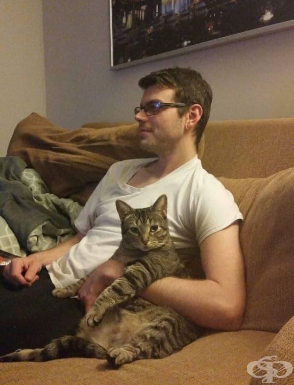 Повярвайте ни - ако котката ви е решила да открадне съпруга ви от вас, нищо няма да я спре.