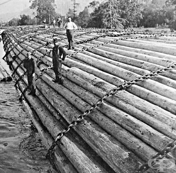 Водач на лодка. В ранните дни на дърводобивната промишленост най-евтиният и най-ефикасен начин за транспортиране на дървени трупи от гората до дъскорезницата е бил с карането на дървени трупи или със сал. Пилотът на лодката е бил лог-водач.