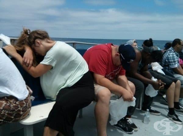 """""""Отидох да гледам китове. Оказа се много тежко за останалите хора""""."""