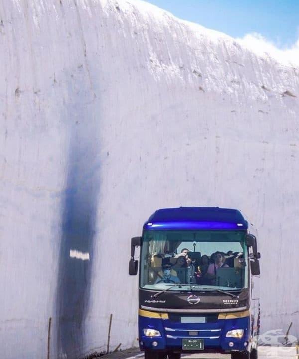 Мястото се посещава всяка година от около 5000 човека, превозвани със специални автобуси.