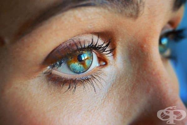 В тези очи може да се види целия свят.