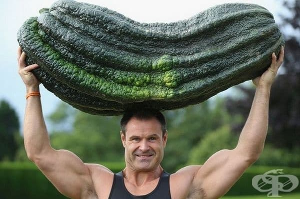 Джонатан Уокър държи тиквичка от 54,3 кг на главата си.