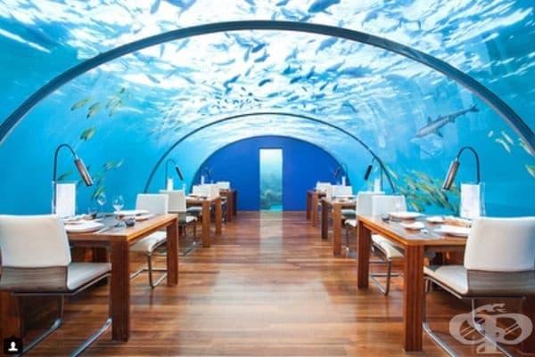 """Ресторант """"Ithaa"""", Малдивите. Ресторантът се намира на дъното на Индийския океан и е изключително впечатляващ."""