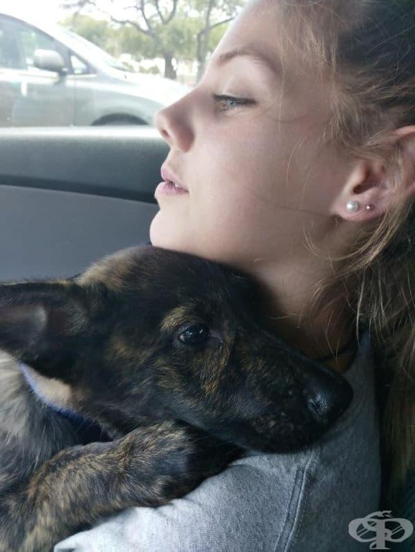 """""""Дъщеря ми обича кучетата и вече няколко месеца се моли да осиновим още едно. Тя дори похарчи всичките си спестявания, за да покриете разходите по неговото лечение. Това е третото куче, осиновено от нея. То се казва Дейзи."""""""