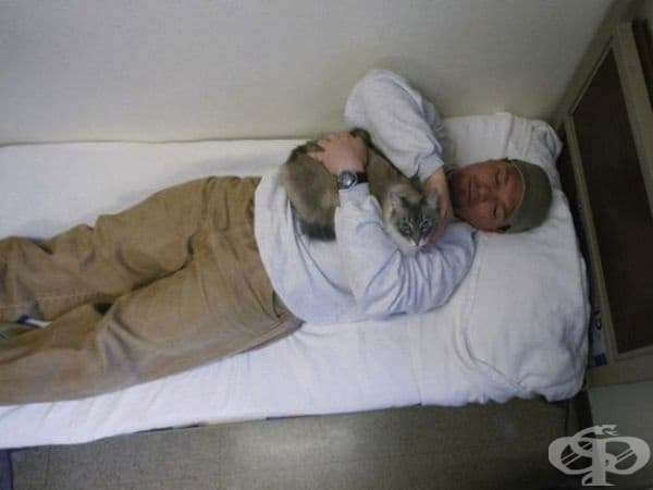 Затворникът Ричард Амаро и Клементин са част от програма, която помага на котки в приюта за животни.