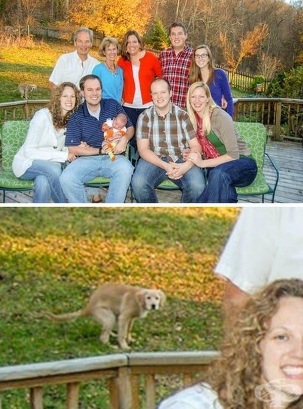 Семейна снимка. Кучето също е участвало.