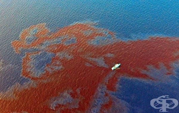 Разлив на необработен петрол в Мексикански залив.