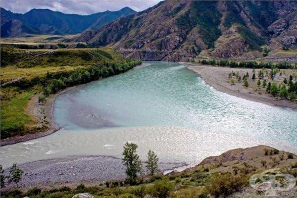 Чия и Катун, Алтай, Сибир, Русия.