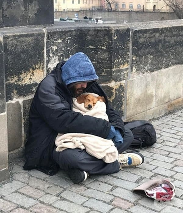 Малкият приятел може да промени живота ви.