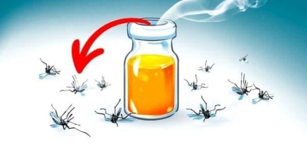 Олио, шампоан и оцет. Ефективен репелент срещу комари и мухи: олио, шампоан и 9% оцет. Смесете тези съставки в равни количества и разбъркайте, докато се получи бяла пяна. Тази комбинация е безопасна и за деца.