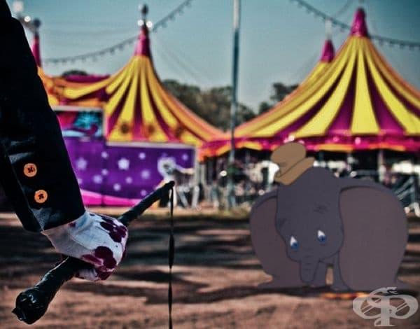 Кариерата на Дъмбо в цирка приключи.