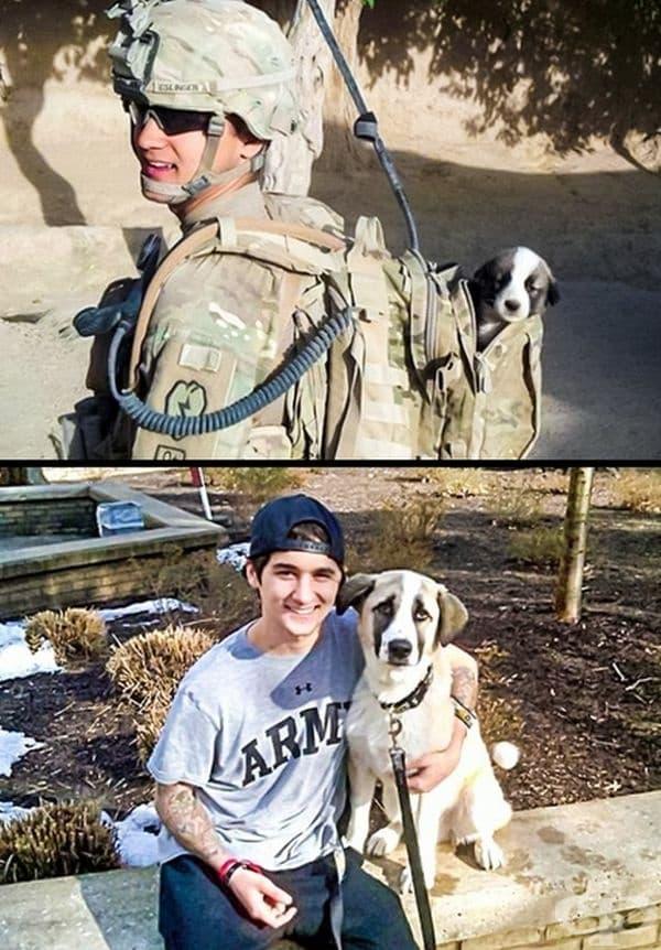 Войник е спасил куче по време на война, което се е превърнало в най-добрия му приятел.