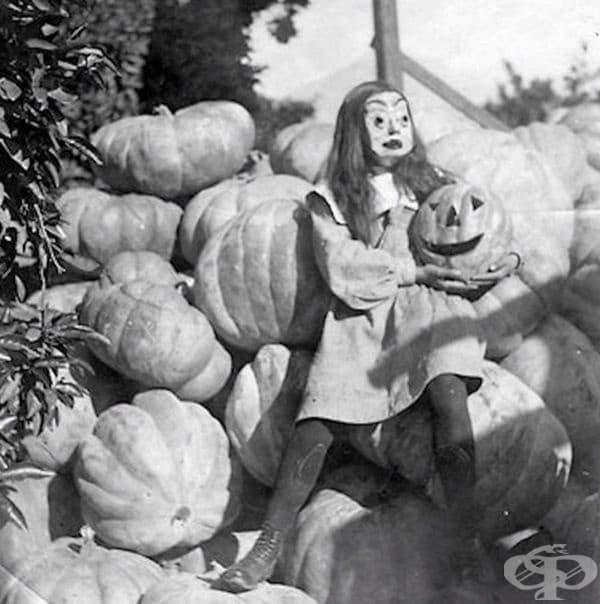 Тиквата е отличителна черта в празника Хелоуин.