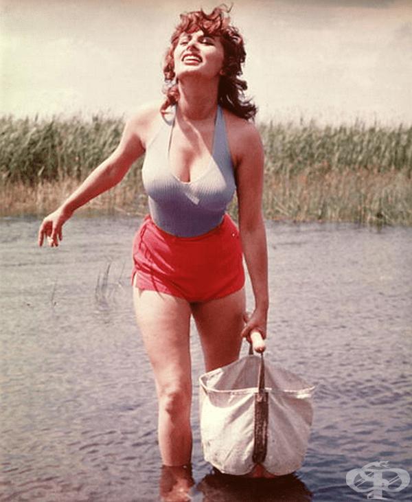 Това, че сте преминали през реката, не означава, че не може да изглеждате добре. Просто попитайте София Лорен!