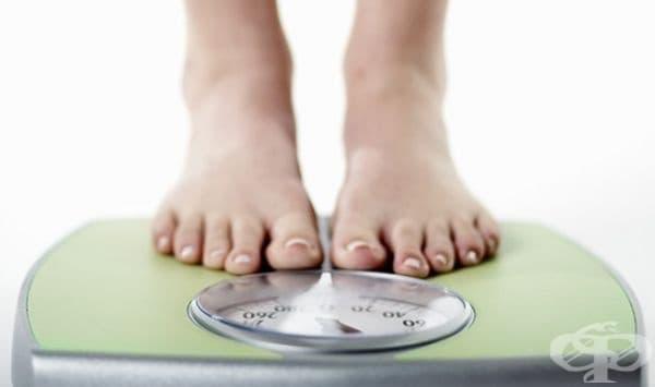 Не забелязвате излишните килограми. Наддаването на килограми е добър признак за спокойни и здрави взаимоотношения.