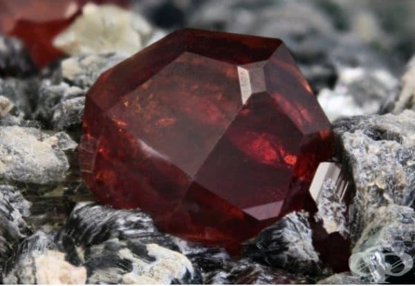 6. Пейнит - 9,000 $ за гр. Този камък е обявен за най-редкия скъпоценен камък в света. Минералът има оранжев или червеникавокафяв цвят и е бил открит преди 65 години. Днес в света има само няколкостотин такива камъни.