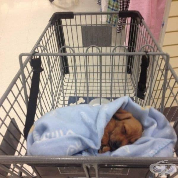 Мъжете не са единствените, които се отегчават от пазаруването.