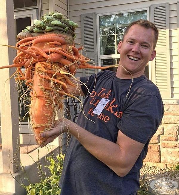 Този морков тежи почти 10 кг.