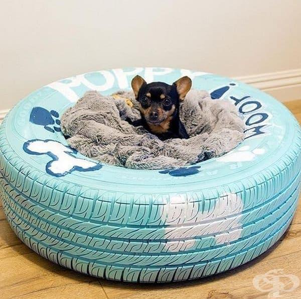 Старата гума също може да се превърне в удобно място за вашето куче.